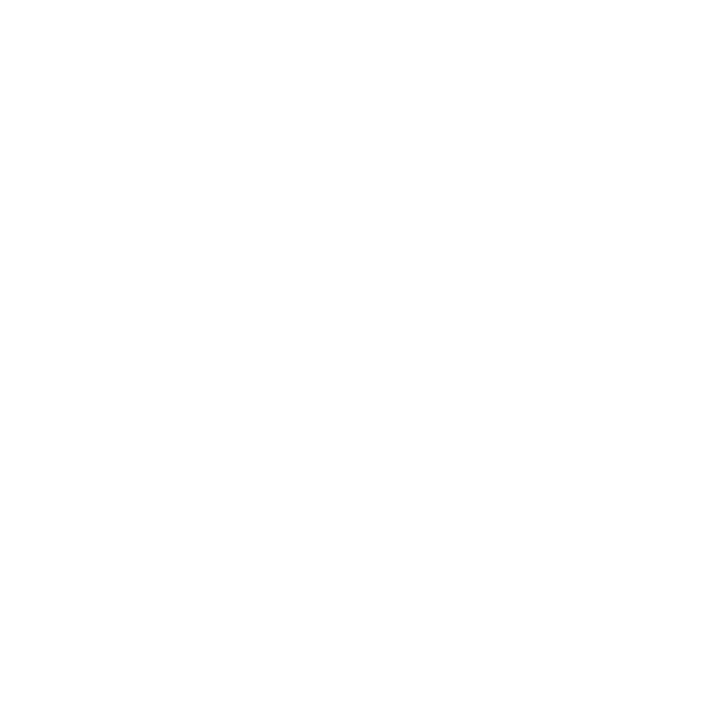 Budget Landscaping