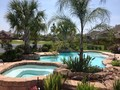Tropical,Waterscapes,Pools,Residential,