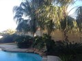 Tropical,Pools,Residential,